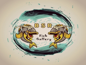 BSR Fish Gallery