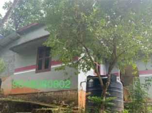 House with plot for sale Punalur