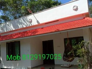 House with plot for sale