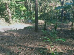 Land for sale in Ayoor